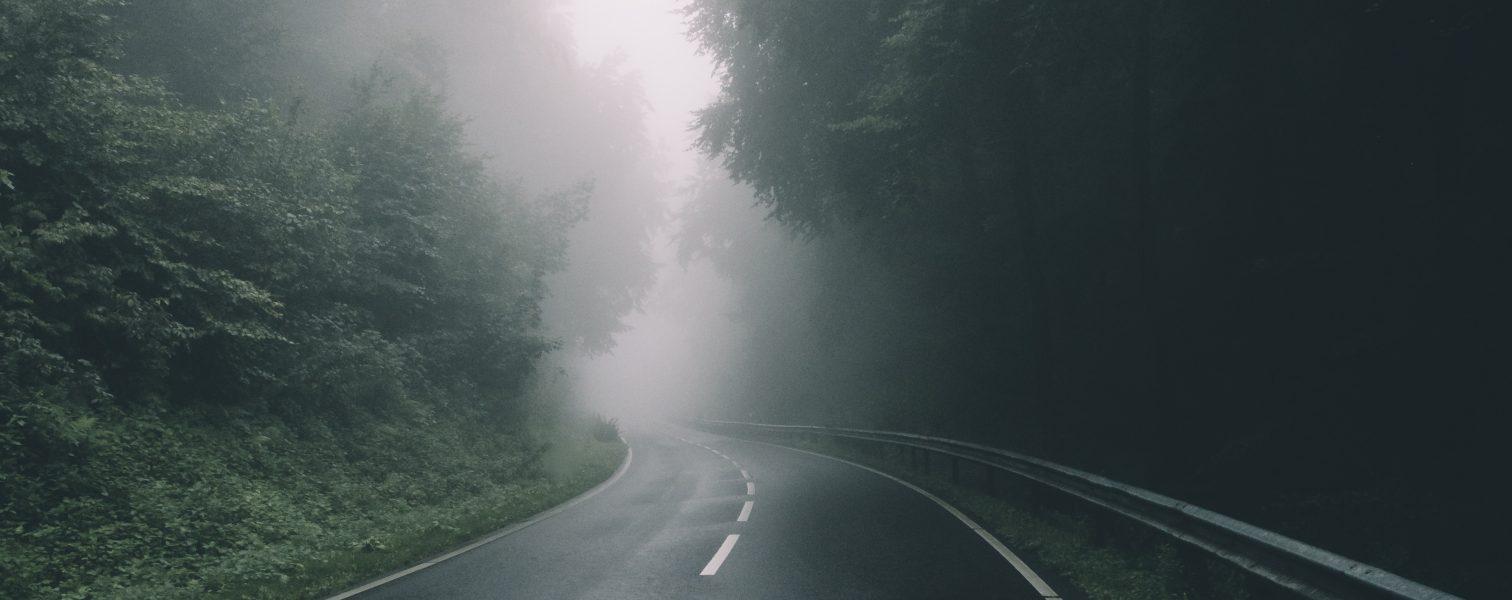 Hævd- og vejsager